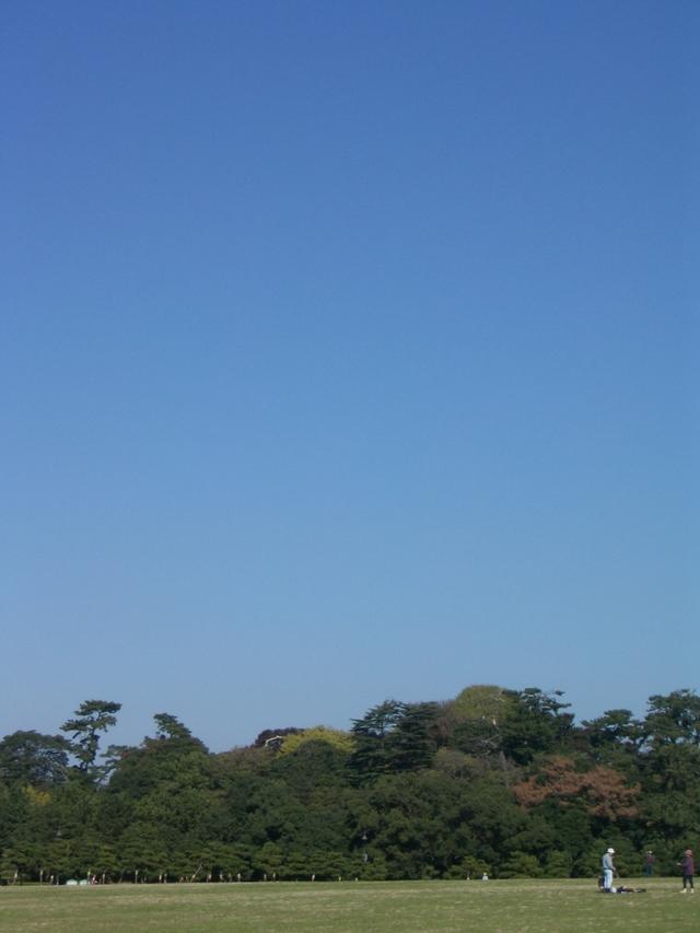 水元公園の青空
